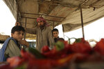 In this In this Thursday, Sept. 5, 2019, photo, a vegetable seller poses for a portrait with his sons in Raqqa, Syria, a city dependent on agriculture and commerce. After initially freezing $230 million of stabilization money to northeast Syria, including Raqqa, last summer, Washington raised over $325 million_ some $180 million of them it directly disperses_ in contributions from 15 countries to support early recovery initiatives in areas liberated from Islamic State militants. (AP Photo/Maya Alleruzzo)