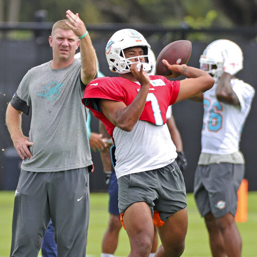 Miami Dolphins Practice