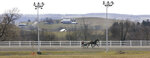 FILE - This March 30, 2004 file photo shows a horse and driver on the track at Vernon Downs in Verona, N.Y. Oneida County Sheriff Rob Maciol is among the local officials and residents expressing concerns about upstate New York's Vernon Downs harness track and casino hosting the 50th anniversary Woodstock festival Aug. 16-18. Vernon Downs could host up to 65,000 people, as opposed to the 150,000 planned for Watkins Glen, and it would not feature camping. (AP Photo/Kevin Rivoli, File)