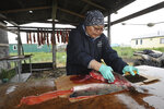 In this June 26, 2019 photo, Tania Snowball cuts up salmon after a day working as the village health aide, in Stebbins, Alaska. As a first responder who relies on village police officers to handle emergencies at her side, Snowball said she couldn't do her job without the local village police officers.  The city is among over a dozen cities in Alaska that have employed police officers whose criminal records should have prevented them from being hired under state law, the Anchorage Daily News and ProPublica reported Saturday, July 20. (Bill Roth/Anchorage Daily News via AP)