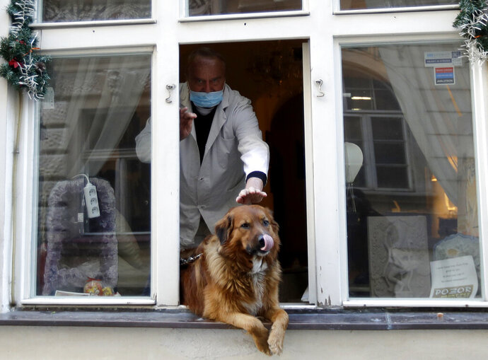 A man pets a dog that sits in a window downtown Prague, Czech Republic, Tuesday, March 24, 2020. The Czech government extended Monday its strict restrictions on movement and other activities until at least April 1, in efforts to contain the outbreak of the new coronavirus. (AP Photo/Petr David Josek)