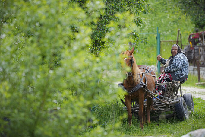 An elderly woman sits in a horse pulled cart during an eyesight examination event, in Nucsoara, Romania, Saturday, May 29, 2021. (AP Photo/Vadim Ghirda)