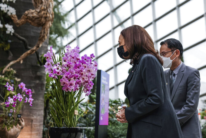 U.S. Vice President Kamala Harris, accompanied by Gardens by the Bay CEO Felix Loh, visits the orchid that was named after her, at the Flower Dome at Gardens by the Bay, following her foreign policy speech in Singapore, Tuesday, Aug. 24, 2021. (Evelyn Hockstein/Pool Photo via AP)