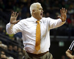 Oregon State head basketball coach Wayne Tinkle calls this his team during the second half of their NCAA college basketball game against Oregon, Saturday, Jan. 5, 2019, in Eugene, Ore. (AP photo/Chris Pietsch)