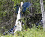 A plane rests in brush and trees after a midair collision outside of Soldotna, Alaska, on Friday, July 31, 2020.  Seven people, including an Alaska state lawmaker, died Friday when two small airplanes collided in midair near the airport on Alaska's Kenai Peninsula. Alaska State Troopers say state Rep. Gary Knopp was the sole occupant of one plane. The other plane was flown by a local pilot, and carried a guide from Kansas and four people from South Carolina. (Jeff Helminiak/Peninsula Clarion via AP)
