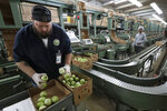 In this, Wednesday, Feb. 5, 2020 photo, Florida Dept. of Agriculture and Consumer Services inspector Jason Crawford, left, inspects boxes of tomatoes before they are shipped, in Florida City, Fla. A Florida bill mandating that private companies verify each new hire's eligibility to work in the U.S. is worrying farmers in the agriculture-rich state. The growers complain they are struggling to find farm workers as the unemployment rate reaches record lows. (AP Photo/Wilfredo Lee)