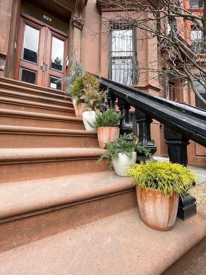 """A procession of conifers in sturdy pots provide a welcoming guide up the stairs to the stoop of this brownstone in the Brooklyn borough of New York. Front stoops have long welcomed visitors to city homes, and have served as gathering spots for friends and neighbors engaging in what urban design activist Jane Jacobs called """"the sidewalk ballet."""" (Kate Cook via AP)"""