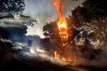 A wildfire burns along Canada Road near Gilroy, Calif., Sunday, July 5, 2020. (AP Photo/Noah Berger)