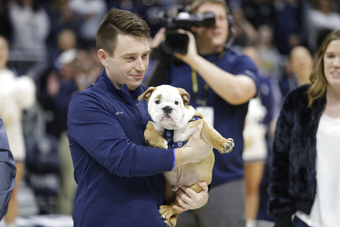 Evan Krauss holds Blue IV as Blue IV is introduced before an NCAA college basketball game between Butler and Marquette, Friday, Jan. 24, 2020, in Indianapolis. (AP Photo/Darron Cummings)