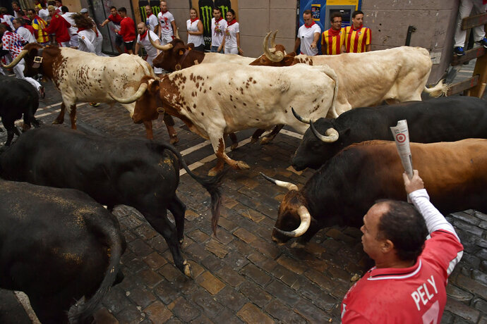 Revellers run next to fighting bulls from the Victoriano del Rio ranch during the 6th day of the running of the bulls at the San Fermin Festival in Pamplona, northern Spain, Thursday, July 12, 2018. Revellers from around the world flock to Pamplona every year to take part in the eight days of the running of the bulls. (AP Photo/Alvaro Barrientos)