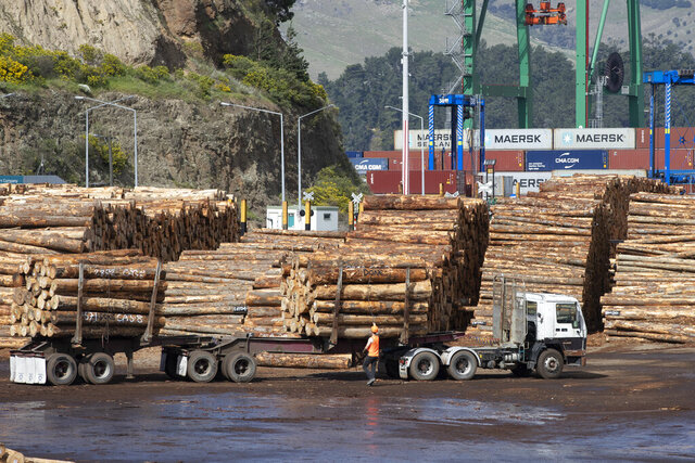 A driver prepares to tie a load of logs to his truck at the Port of Lyttelton near Christchurch, New Zealand, Thursday, Sept. 17, 2020. New Zealand's economy shrank by a record 12.2% in the second quarter due to a strict coronavirus lockdown, but forecasts show some bright spots among the gloom. (AP Photo/Mark Baker)