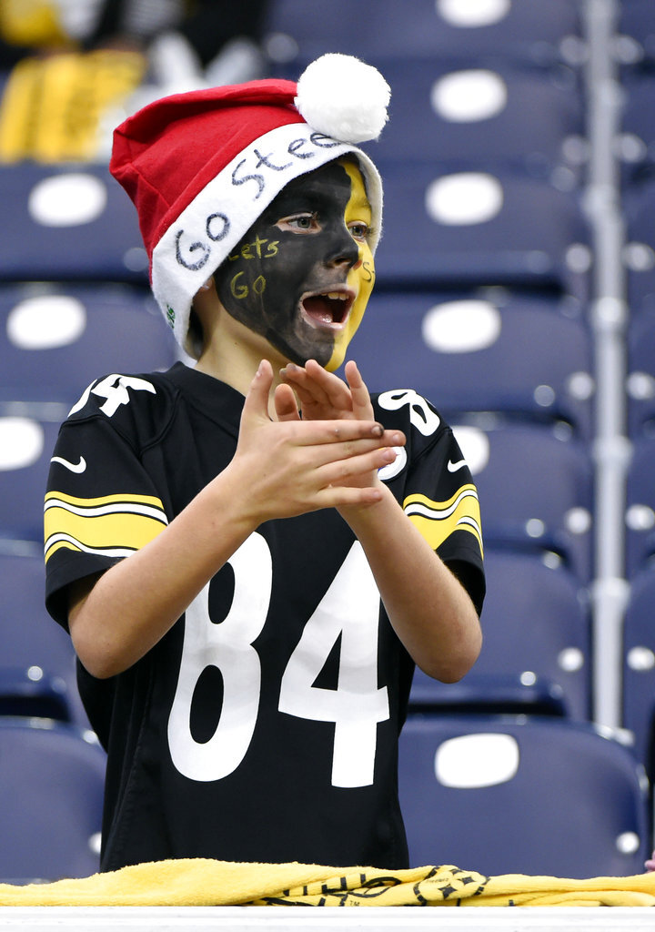 Pittsburgh Steelers Fan