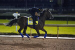 Kentucky Derby entry Authentic runs during a workout at Churchill Downs, Friday, Sept. 4, 2020, in Louisville, Ky. The Kentucky Derby is scheduled for Saturday, Sept. 5th. (AP Photo/Darron Cummings)