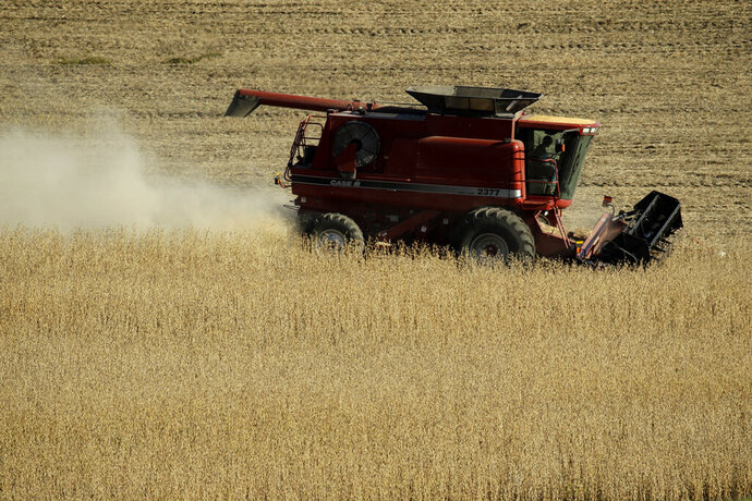 FILE - In this Oct. 13, 2019, file photo a farmer harvests soybeans in a field near Concordia, Mo. On Wednesday, Jan. 15, 2020, the Labor Department releases the Producer Price Index for December. (AP Photo/Charlie Riedel, File)
