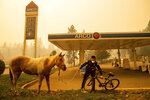 Officer Randy Law tends to a rescued horse rescued as a wildfire burns in Paradise, Calif., on Friday, Nov. 9, 2018. (AP Photo/Noah Berger)