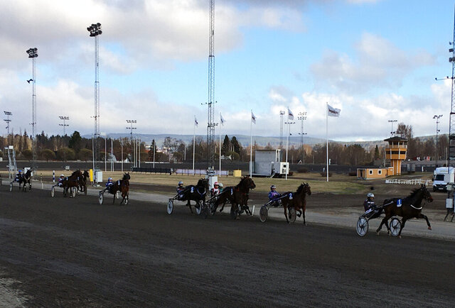 In this photo taken on Thursday, April 30, 2020, horse race at the Bergsaker racecourse in Vasternorrland, Sweden. Swedish trotting is one of only a handful of European sports to have persevered during the coronavirus outbreak while competitions elsewhere shut down across the continent. That's not just good news for the 40,000 people working in the equestrian sector in Sweden. It's something of a savior for betting companies and gamblers around the world who have been starved of their usual diet of top-class sport in Europe. (AP Photo/Steve Douglas)