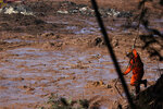 A firefighter looks for victims in the mud, days after a dam collapse in Brumadinho, Brazil, Monday, Jan. 28, 2019. Firefighters on Monday carefully moved over treacherous mud, sometimes walking, sometimes crawling, in search of survivors or bodies four days after a dam collapse that buried mine buildings and surrounding neighborhoods with iron ore waste. (AP Photo/Leo Correa)