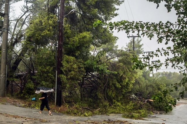 A woman uses an umbrella as she passes next to fallen trees during a storm at the port of Argostoli, on the Ionian island of Kefalonia, western Greece, Friday, Sept. 18, 2020. A powerful tropical-like storm named Ianos battered the western islands of Zakynthos, Kefalonia, and Ithaki overnight, causing flash flooding, property damage, power outages, and road closures mostly from downed trees, police and local authorities said. (AP Photo/Nikiforos Stamenis)
