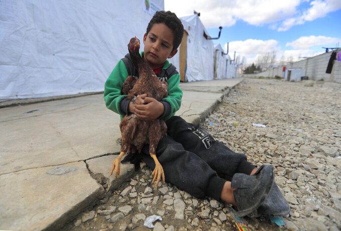 A displaced Syrian boy holds a chicken, as he sits outside his family's tent, at a refugee camp in Bar Elias, Bekaa Valley, Lebanon, Friday, March 5, 2021. UNICEF said Wednesday, March 10, 2021 that Syria's 10-year-long civil war has killed or wounded about 12,000 children and left millions out of school in what could have repercussions for years to come in the country. The country's bitter conflict has killed nearly half a million people, wounded more than a million and displaced half the country's population, including more than 5 million as refugees. (AP Photo/Hussein Malla)