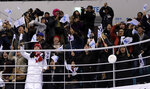 Fans cheer after South Korea's Randi Heesoo Griffin (37), of the combined Koreas team, scores a goal against Japan during the second period of the preliminary round of the women's hockey game at the 2018 Winter Olympics in Gangneung, South Korea, Wednesday, Feb. 14, 2018. (AP Photo/Matt Slocum)