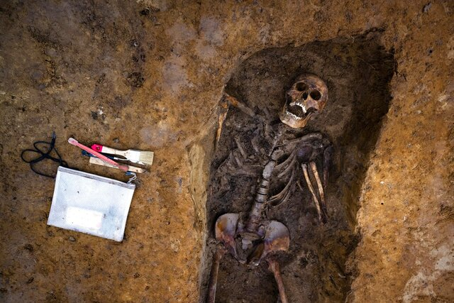 In this Wednesday, Oct. 2, 2019 photo, the remains of a Soviet soldier are exhumed, during a search for fallen WWII soldiers near the village of Klessin in Germany. In eastern Germany, today's verdant pastures were killing fields 75 years ago as the Soviet Red Army pushed toward the Nazi capital in the final weeks of World War Two. Volunteers from across Europe comb across the area looking for the remains of the thousands of missing soldiers, working from old maps and aerial photos to identify the trenches, foxholes and strongpoints where they could be buried. They strive to give the dead a proper burial, and wherever possible identify the remains to provide closure for families.  (AP Photo/Markus Schreiber)