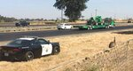 In this Friday, Sept. 13, 2019 photo, released by California Highway Patrol, a CHP car follows an emu as it ambled along the southbound lanes of Highway 99, north of Avenue 17, near Madera, Calif.   Authorities say Madera County Animal Services took the bird into custody uninjured. (California Highway Patrol via AP)