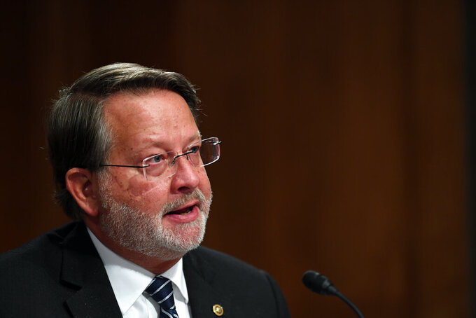 Senator Gary Peters, D-Mich., questions Department of Homeland Security Acting Secretary Chad Wolf during a Senate Homeland Security and Governmental Affairs Committee hearing to examine Department of Homeland Security personnel deployments to recent protests on Thursday, Aug. 6, 2020, in Washington. (Toni Sandys/The Washington Post via AP, Pool)