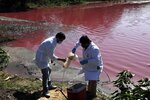 Marcelo Coronel, left, and Francisco Ferreira, technicians from the National University Multidisciplinary Lab, take samples from the Cerro Lagoon where the water is colored in Limpio, Paraguay, Wednesday, Aug. 5, 2020. According to Ferreira, the water's color is due to the presence of heavy metals like chromium, commonly used in the tannery process. (AP Photo/Jorge Saenz)