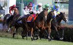 Lafranco Dettori (7) rides Expert Eye to victory in the Breeders' Cup Mile horse race at Churchill Downs, Saturday, Nov. 3, 2018, in Louisville, Ky. (AP Photo/Darron Cummings)
