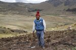 Farmer Ciriaco Huaman holds a pickaxe while standing in his potato field during harvest, in Pisac, southern rural Peru, Friday, Oct. 30, 2020. Farmers like Huaman are responsible for the food that lands on 70% of Peruvian dinner tables, officials say, but months of pandemic lockdown and a souring economy have left many bankrupt and questioning whether to plant again. (AP Photo/Martin Mejia)