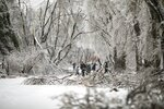 People walk between fallen tree branches after an ice storm in Vladivostok, Russia, Friday, Nov. 20, 2020. Thousands of people in Russia's Far East region of Primorye remained without heating or electricity on Wednesday, Nov. 25, 2020 as local authorities and emergency services wrestled with the consequences of an unprecedented ice storm that hit the region last week. (AP Photo/Aleksander Khitrov)