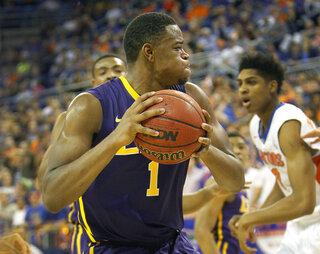 Florida LSU basketball