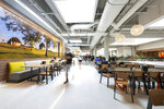 A walkway at the remodeled Illinois Street Residence Hall dining area features a mural of the South Farms, at the University of Illinois, in Urbana, Ill. (Anthony Zilas/The News-Gazette via AP)