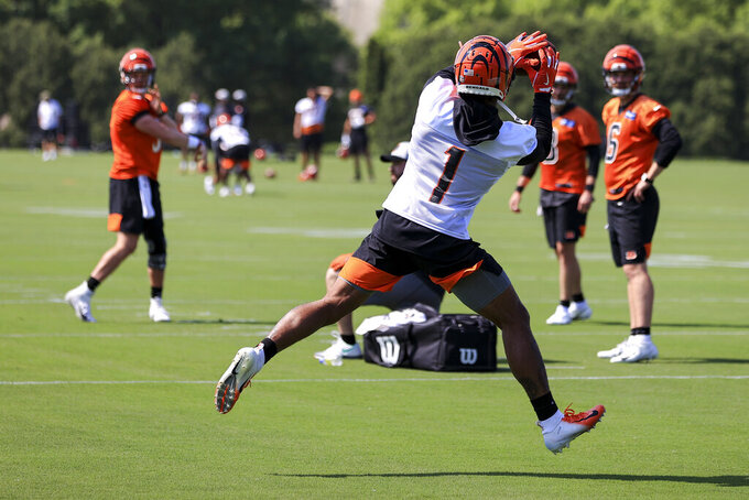 Cincinnati Bengals' Ja'Marr Chase makes a catch during NFL football practice in Cincinnati, Tuesday, May 25, 2021. (AP Photo/Aaron Doster)