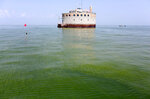 FILE – In this Aug. 3, 2014, file photo, the water intake crib for the city of Toledo, Ohio, is surrounded by an algae bloom on Lake Erie, about 2.5 miles off the shore of Curtice, Ohio. Researchers are expecting another mild algae outbreak on Lake Erie this summer. They expect it to be the first time in more than a decade that the lake will see back-to-back years of mild algae blooms. That's the good news. But scientists at the National Oceanic and Atmospheric Administration say it doesn't mean the shallowest of the Great Lakes is turning the corner just yet. (AP Photo/Haraz N. Ghanbari, File)