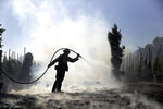 Morgan Clark, a firefighter with the Oxnard Fire Dept., hoses down hot spots created by the Easy Fire on a farm Wednesday, Oct. 30, 2019, in Simi Valley, Calif. (AP Photo/Marcio Jose Sanchez)