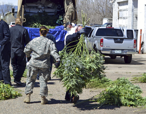 FILE — In this April 14, 2016, file photo, investigators load marijuana plants onto a Colorado National Guard truck outside a suspected illegal grow operation in north Denver. A county in southern Oregon says it is so overwhelmed by an increase in the number and size of illegal marijuana farms that it declared a state of emergency Wednesday, Oct. 13, 2021, appealing to the governor and the Legislature's leaders for help. (AP Photo/P. Solomon Banda, File)