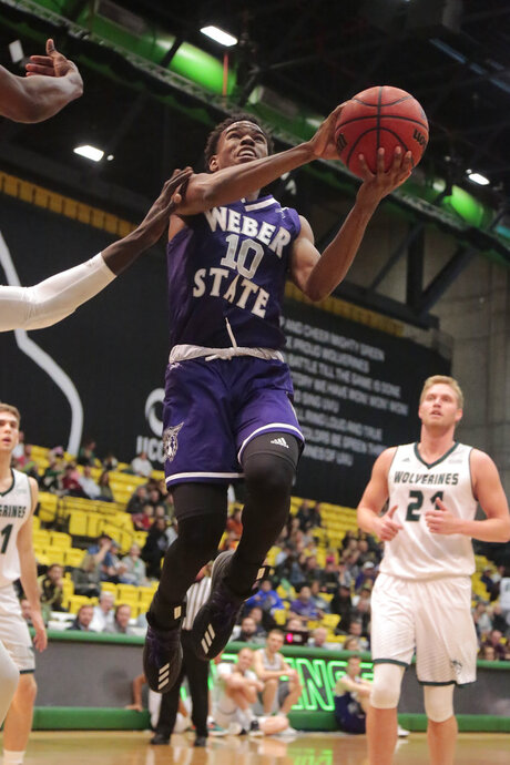 Weber St Utah Valley Basketball