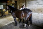 Kirsty Wright, 32, of Odessa, grooms her nine-year-old pony, Noelle, on Monday, August 12, 2019, at Winding Oaks Equestrian Center in Masaryktown, Fla. Noelle was found in a wooded area in Jacksonville in 2017 and was adopted by Wright, a student, who has a goal to compete with Noelle in the Pony Finals (event). (Douglas R. Clifford/Tampa Bay Times via AP)