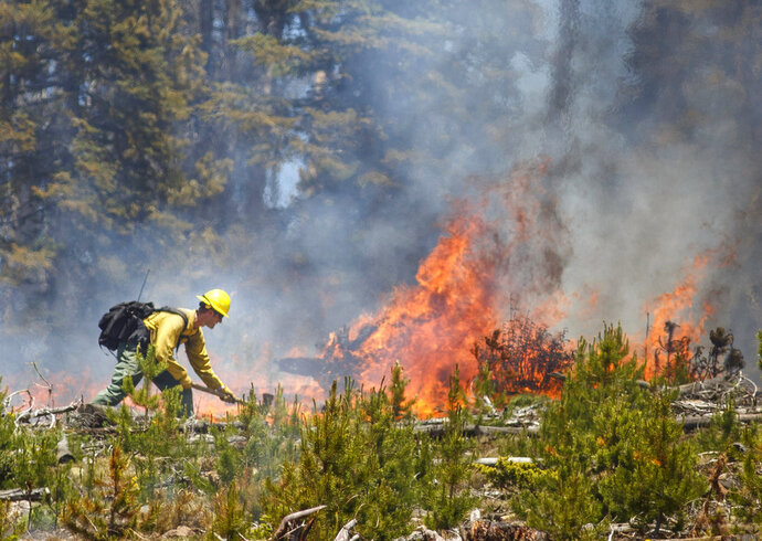 A wildland firefighter works to contain the flames at the Buffalo Fire site Wednesday, June 13, 2018, near Silverthorne, Colo. As of 10:45 am Wednesday, the 91 acre fire is 0 percent contained but no homes were damaged.  (Hugh Carey/Summit Daily News via AP)
