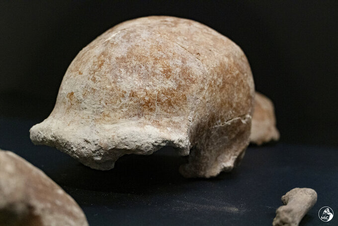 """This image released by the Italian Culture Ministry shows fossil findings that were discovered  in a cave near Rome, shedding new light on how the Italian peninsula was populated and under what environmental conditions. The Italian Culture Ministry announced the discovery Saturday, May 8, 2021, saying it confirmed that the Guattari Cave in San Felice Circeo, where a Neanderthal skull was discovered in 1939, was """"one of the most significant places in the world for the history of Neanderthals."""" (Emanuele Antonio Minerva/Italian Culture Ministry via AP)"""