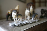 In this Tuesday, Jan. 7, 2020, photo, a wolf statue sits inside the home of Norm Bishop outside Bozeman, Mont. Bishop, who was Yellowstone's resource interpreter, had spent years giving public presentations about the science of wolf reintroduction. He would explain what the experts thought would happen if gray wolves were restored to the Yellowstone ecosystem. (Ryan Berry/Bozeman Daily Chronicle via AP)