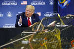 President Donald Trump speaks during a roundtable discussion with commercial fishermen at Bangor International Airport in Bangor, Maine, Friday, June 5, 2020. (AP Photo/Patrick Semansky)