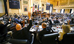 Republican members of the House of Delegates raise their hands to call for a recorded vote on the budget bill at the Virginia State Capitol in Richmond, Va., Tuesday, Aug. 3, 2021, on the second day of the General Assembly Special Session. (Bob Brown/Richmond Times-Dispatch via AP)
