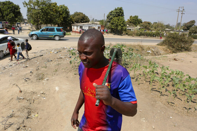 """Tinashe Mapuranga works outside his home near Harare, Zimbabwe, on Thursday, Aug, 25, 2021. Amid the lockdowns from the coronavirus pandemic, the 24-year-old was one of the first to be laid off from his job as an intern at a leading bank and has no idea when he'll be able to get his degree because of frequent school closures. """"It has really affected me a lot in my studies. I have no money to buy data and I don't have a personal laptop to study online and keep up like what others are doing,"""" said Mapuranga. A survey of people aged 18-24 in 15 African countries found that many have lost jobs or have seen their education disrupted by the pandemic. (AP Photo/Tsvangirayi Mukwazhi)"""