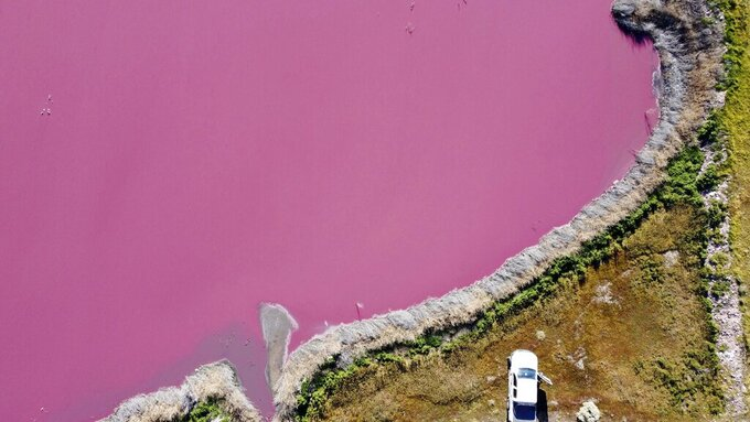 Aerial view of Corfo lagoon that has turned a striking shade of pink as a result of what local environmentalists are attributing to increased pollution from a nearby industrial park, in Trelew, Chubut province, Argentina, Thursday July 29, 2021. (AP Photo/Daniel Feldman)