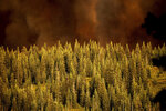 Smoke from the Dixie Fire rises over trees in Lassen National Forest, Calif., near Jonesville on Monday, July 26, 2021. (AP Photo/Noah Berger)