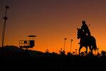A horse warms up prior to the Breeders' Cup horse races at Santa Anita Park in Arcadia, Calif., Friday, Nov. 1, 2019. (AP Photo/Mark J. Terrill)