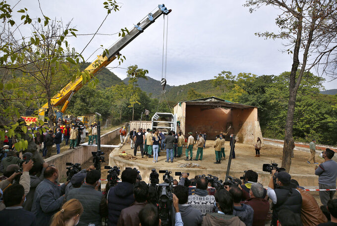Pakistani wildlife workers and experts from the international animal welfare organization Four Paws use a crane to move a crate carrying an elephant named Kaavan for transporting him to a sanctuary in Cambodia, at the Marghazar Zoo in Islamabad, Pakistan, Sunday, Nov. 29, 2020. Kavaan, the world's loneliest elephant, who became a cause celebre in part because America's iconic singer and actress Cher joined the battle to save him from his desperate conditions at the zoo. (AP Photo/Anjum Naveed)