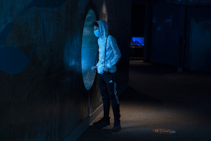 Brendan Heydinger, 14, visits the Aquarium of the Pacific on its first day of reopening to public in Long Beach, Calif., Tuesday, March 16, 2021. California has been on a reopening roll since a deadly winter surge that saw skyrocketing hospitalizations and positivity rates. (AP Photo/Jae C. Hong)